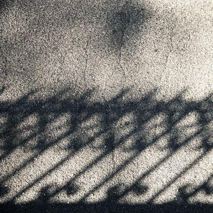 lens-foto-van-de-dag